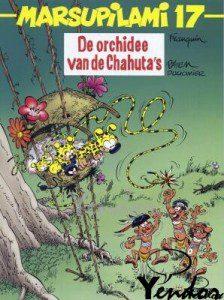 De orchidee van de Chahuta's