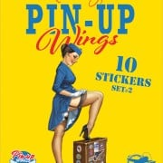 Pin Up stickerset 2 - 9789463062817